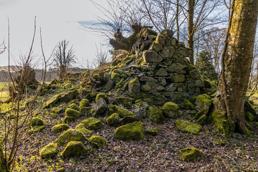 Cally Castle