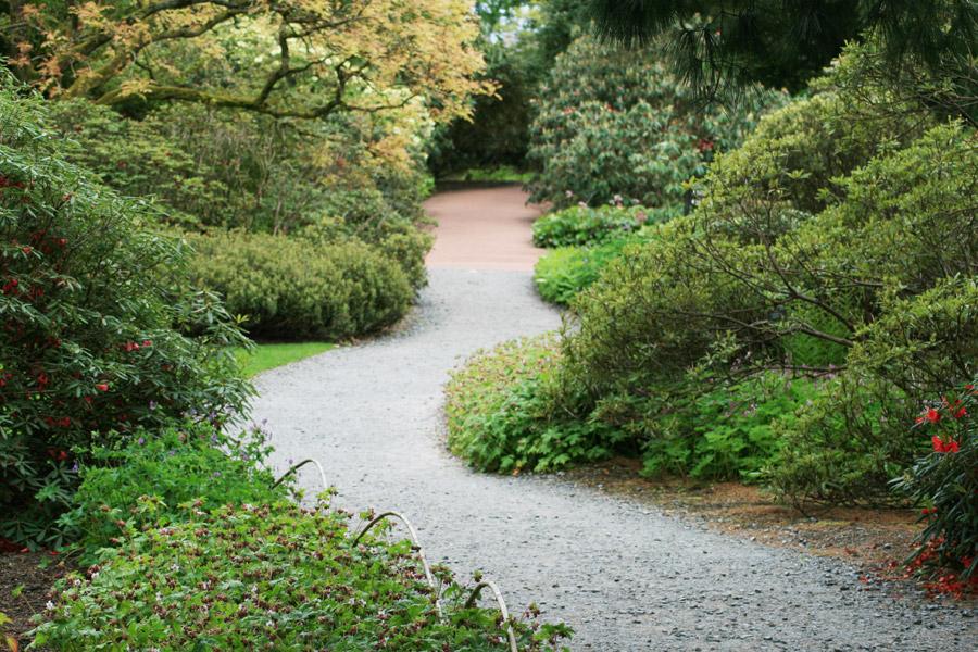 The Royal Botanic Garden Edinburgh Stravaiging Around Scotland