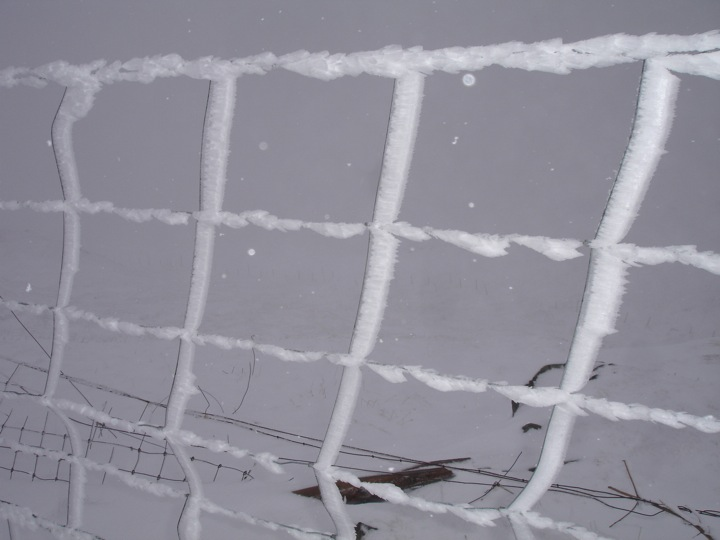 icy deer fence on Ben More