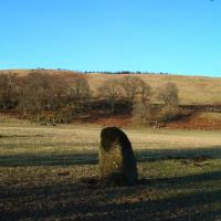 Dunruchan F standing stone, Perthshire