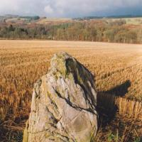 Haugh of Grandtully standing stone, Perthshire