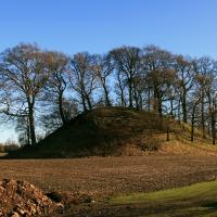 Dunipace motte (Hills of Dunipace), Stirlingshire