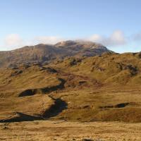benlawers002