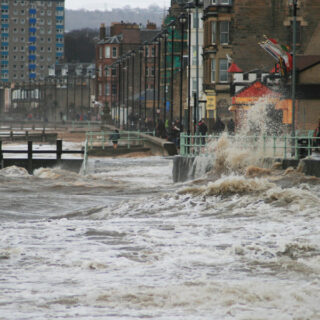 Stormy Portobello and birdlife on the River Tyne