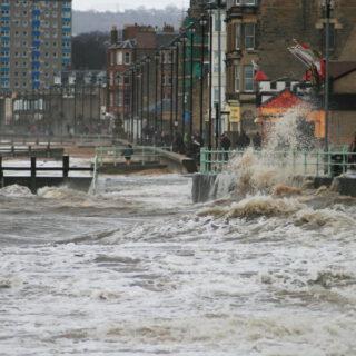 Stormy Portobello and birdlife on the River Tyne
